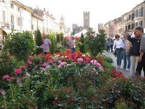 Villafranca in Fiore - 4^ Mostramercato