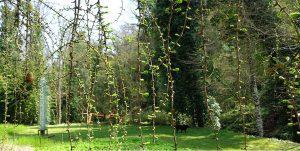 Visite guidate al Giardino di Sculture La Serpara di Paul Wiedmer