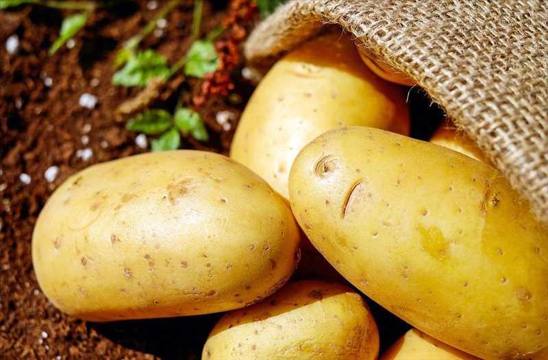 83568-patate