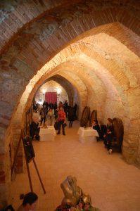 Tra Vino e Castelli dell'Oltrepo Pavese