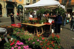 Riso & Rose in Monferrato