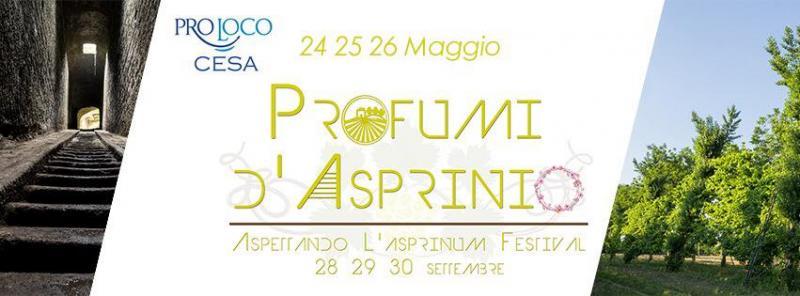 Sagra_Del_Vino_Asprinio