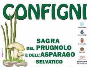 Sagra del Prugnolo e dell'Asparago Selvatico - 15° Sagra di Configni