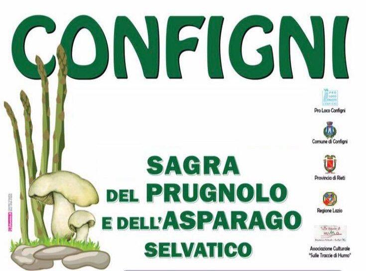 Sagra_del_Prugnolo_e_dell_Asparago_Selvatico_a_Configni1