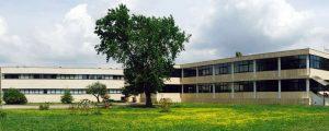 Il Salone dell'OliOlive e dei Sapori