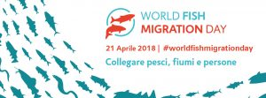 World Fish Migration Day 2018