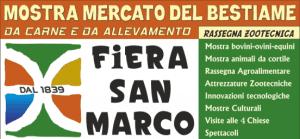 Fiera di San Marco