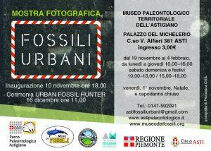 Urban Fossil Hunter