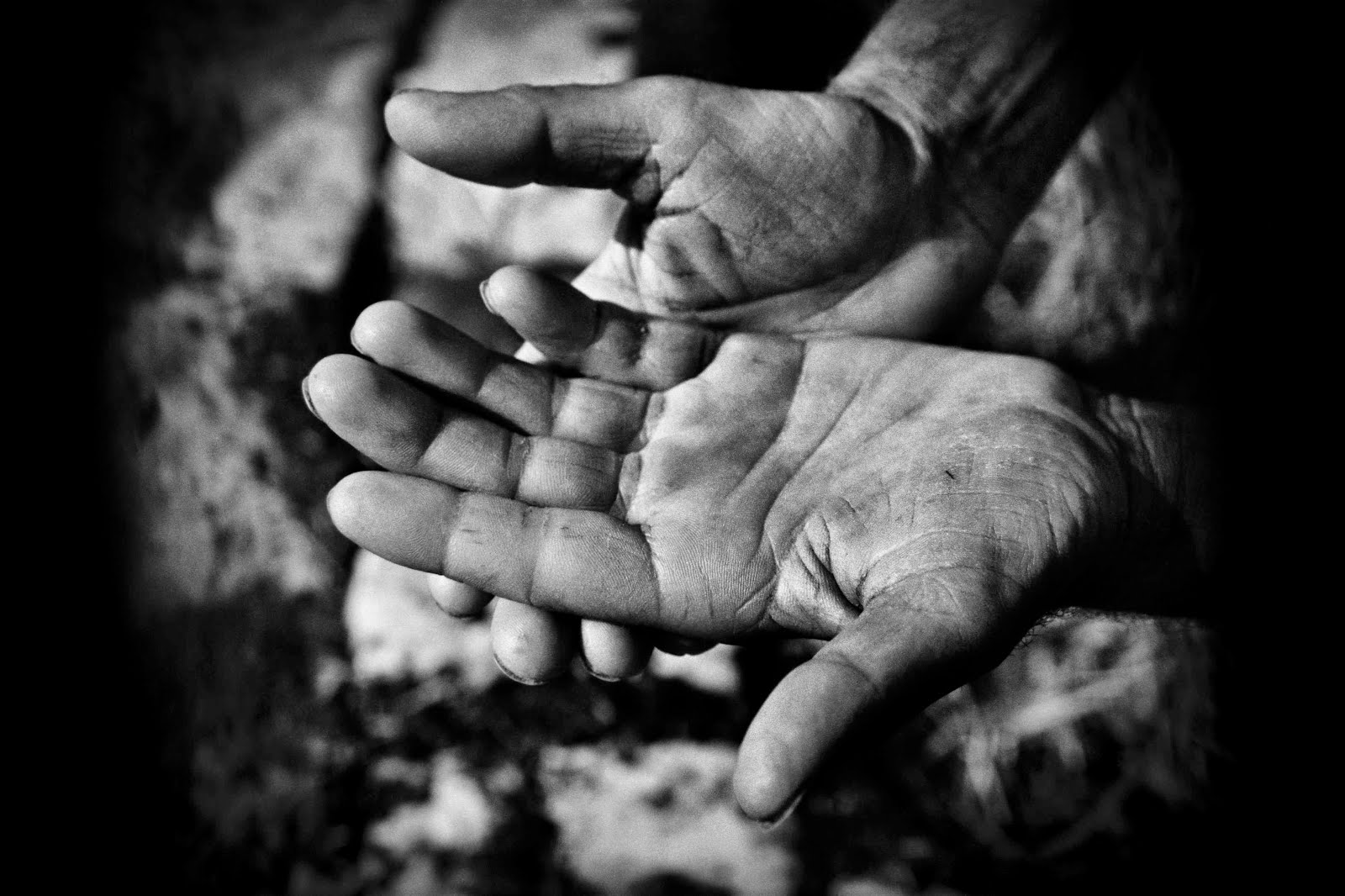 giovanni-caccamo-mani-di-questa-terra-1-758193