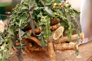 Sagra Del Broccolo Fiolaro