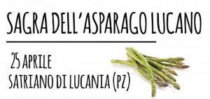Sagra dell'asparago Selvatico Lucano
