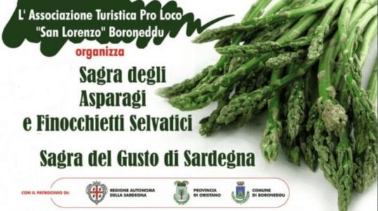 sagra_degli_asparagi_boroneddu