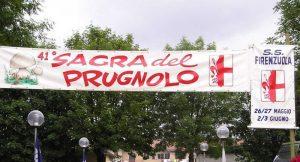 41° ediz. Sagra del Fungo Prugnolo
