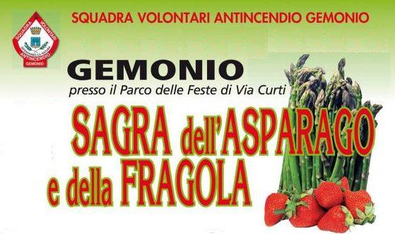 sagra_dell_asparago_e_della_fragola_gemonio1