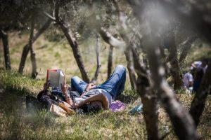 """11^ edizione di """"Pic & Nic. Arte, musica e merende tra gli ulivi"""""""