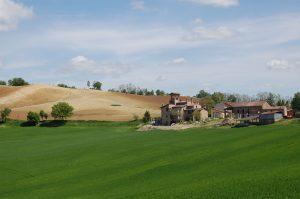 Merenda di fine estate sulle Colline dell'Oltrepò Pavese