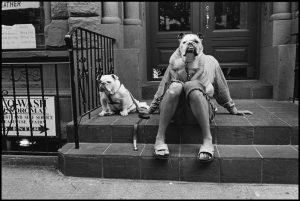 I cani sono come gli umani, solo con più capelli - mostra fotografica di Elliott Erwitt