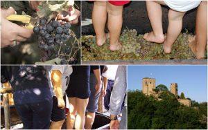 Festa dell'Uva a Castello