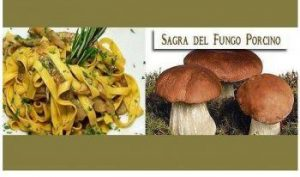 Sagra del Fungo Porcino a Cortona