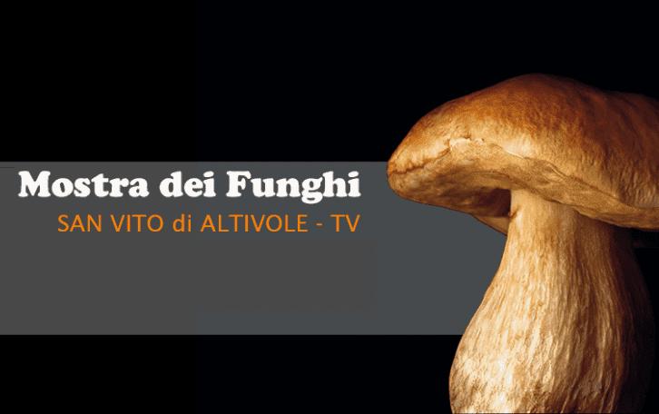 Mostra dei Funghi di Altivole