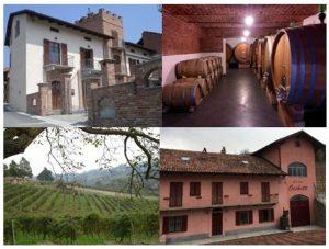 Poderi Moretti: visita guidata e degustazione di vini