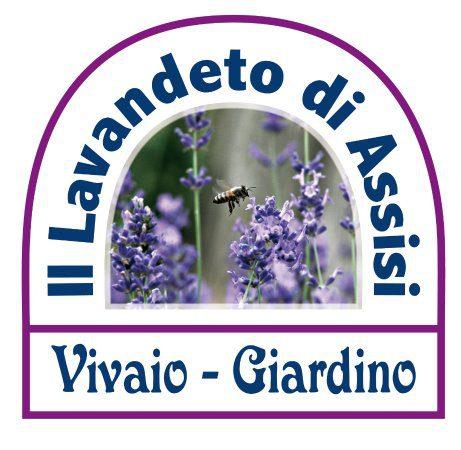 """5° Festa delle Salvie e Mostra di florovivaismo """"Al Lavandeto è l'ora del Giardino"""""""
