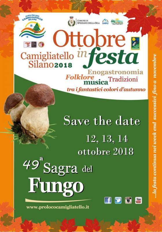 49° Sagra Del Fungo