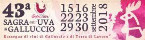 43° Sagra dell'Uva