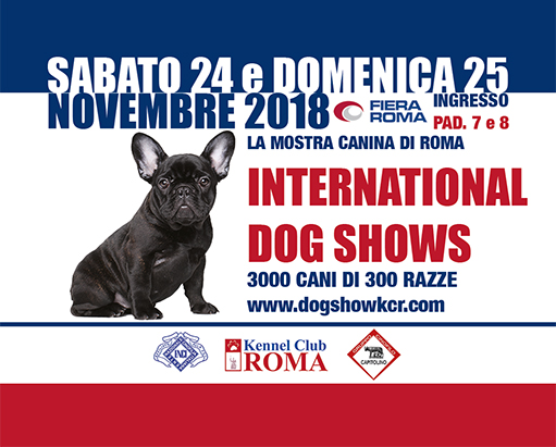INTERNATIONAL DOG SHOWS - mostra canina di Roma
