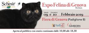 WORLD CATS - Esposizione Internazionale Felina