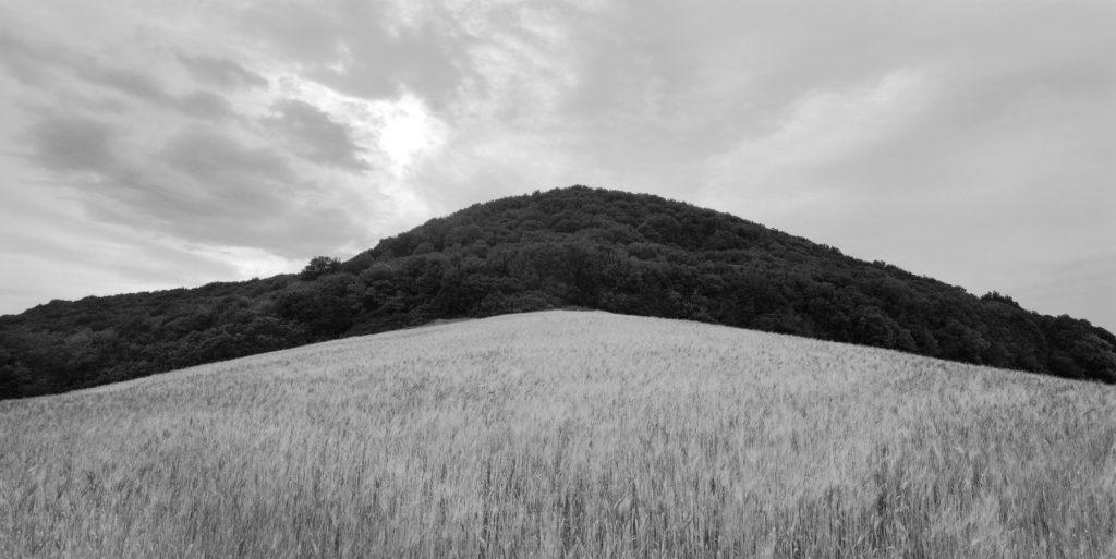 Andrea Calabresi - Sun, and Close Landscapes