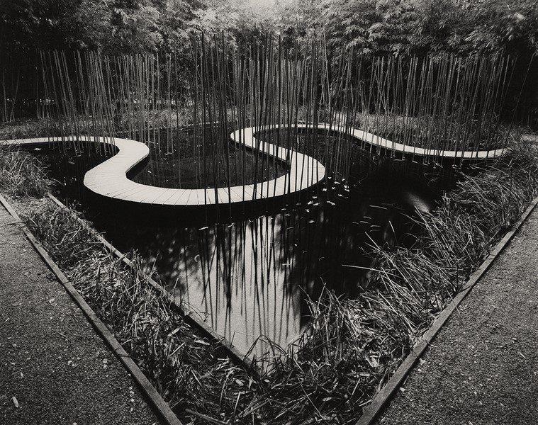 Intrepidi Intrecci - mostra fotografica di Luigi Menozzi
