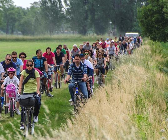 Biciclettata delle Torri - Mangialonga in Bicicletta