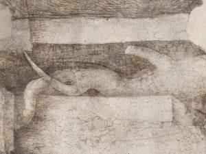 Leonardo Mai Visto