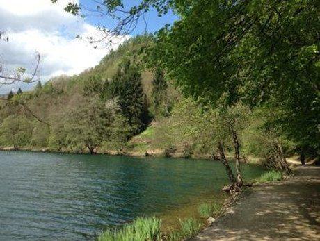 Passeggiata Botanica al Lago di Levico