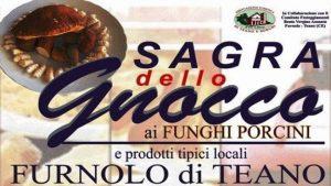 Sagra dello Gnocco ai Funghi Porcini - 14° edizione