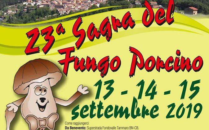 Sagra del Fungo Porcino - 23° edizione