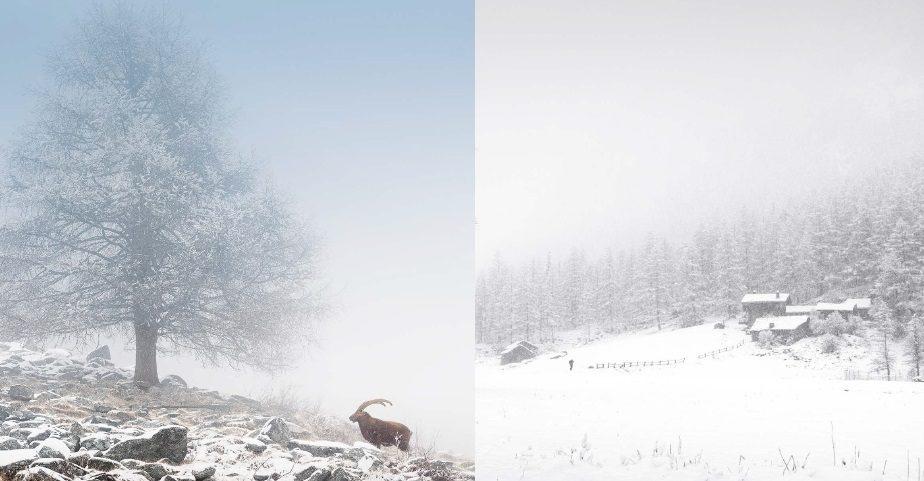 In Paradiso - Mostra Fotografica