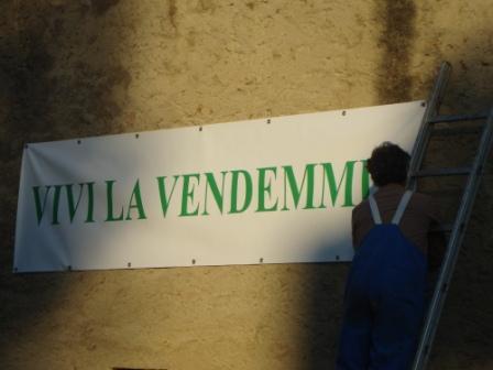 Vivi la Vendemmia - 13° edizione