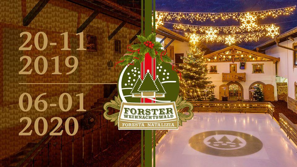 Forster Weihnachtswald - Foresta Natalizia 2019