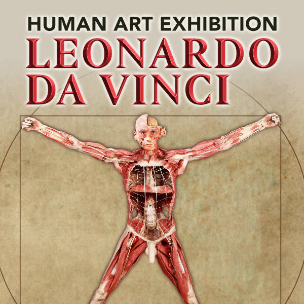 LEONARDO DA VINCI. Authentic Human Bodies