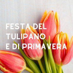 Festa del Tulipano e di Primavera - edizione 2020