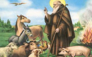 Sagra di Sant'Antonio Abate - edizione 2020