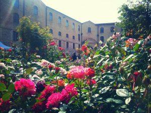 Ancona Flower Show - 8° edizione