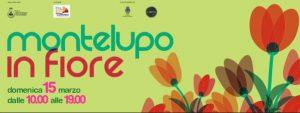 Montelupo in Fiore - edizione 2020