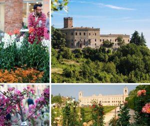 Reggio Emilia in Fiore - edizione 2020