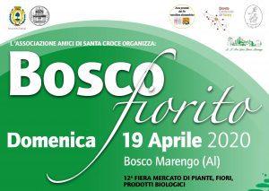 Bosco Fiorito - 12° edizione