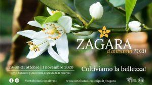 ZAGARA D'AUTUNNO - 20° Edizione
