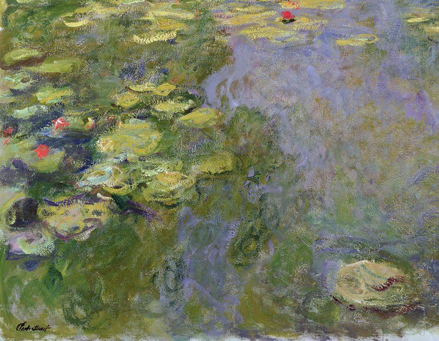 L'acquario e le Ninfee - Dalla natura all'arte di Monet